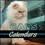 Cats & Kittens Calendars