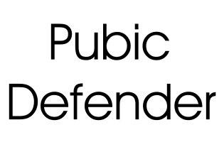 Pubic defender