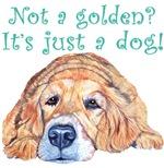 Not a Golden?