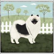 Country Keeshond