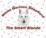 White German Shepherd...Smart Blonde