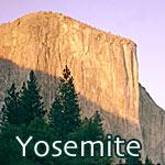 Yosemite National Park t-shirts