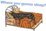 CBlk Where you gonna sleep