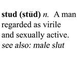 Stud - The Male Slut