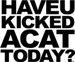 Have U Kicked A Cat Today?