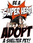 Super Hero Adoption