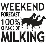Funny Dairy Goats Weekend Forecast