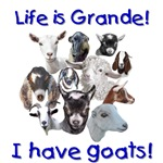 Goats-Life is Grande
