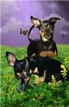 Teddie Sue & Spanky