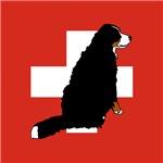Sitting Bernese Mountain Dog (Swiss)01