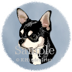 Chihuahua Expression
