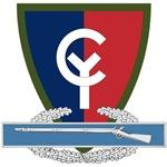 38th Infantry CIB