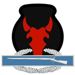34th Infantry CIB