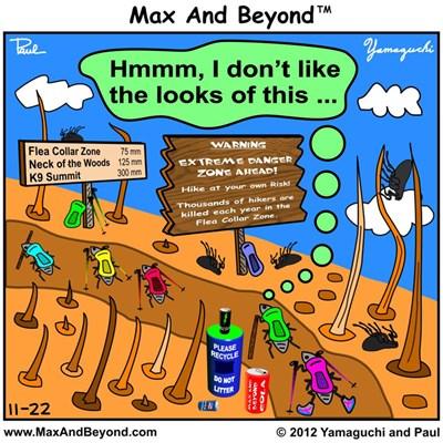 Cartoon: Fleas Hiking On Back of Dog