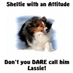 Attitude! Sheltie