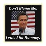 I Voted For Romney
