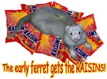 Early Ferret