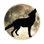 Coyote Howl Moon