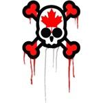 Canadian Punk Skull