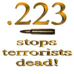 Anti-Terrorists