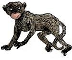 Creepy Monkey T-shirts