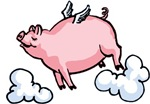 Flying Pig T-shirts & Gifts
