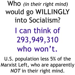 Who would go willingly into Socialism