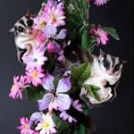 Flowers #12