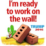 Ready to Build the Wall!