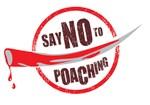Say NO to poaching!