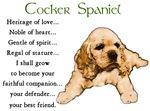 Cocker Spaniel Puppy Gifts