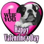 Boston Terrier  Valentines Day