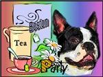 Boston Terrier_