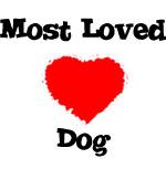 Most Loved Dog