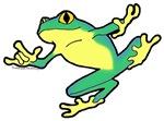 ASL Frog in Flight