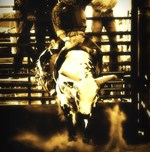 Rodeo Cowboy Bull Riding Vintage Style