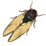 Cicada Brood II Alone