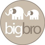 big brother t-shirt elephant big and little