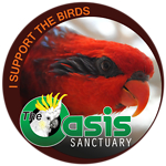 Birds of The Oasis Lorikeet Red Collection