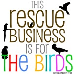 rescue business for the birds