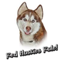 Red Huskies Rule!