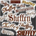 Sheffey Fonts - Gray and Bronze 9643