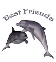Best Friends Dolphins