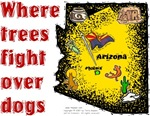 AZ - Where Trees Fight Over Dogs!