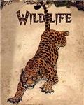 Vintage Animal Posters