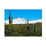 Four Peaks Desert Trail Snow