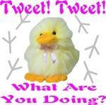 Tweet Tweet What Are You Doing?