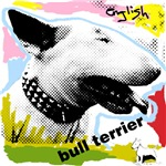 English Bull Terrier Punk
