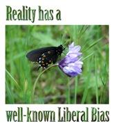 Politics & Ideas