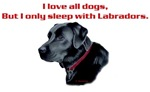 I sleep with Black Labs